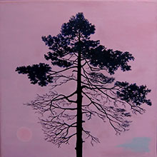 'Un-natural Nature: Tree Portrait (2)'